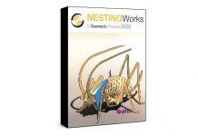 Geometric NestingWorks 2020