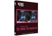 Topaz JPEG to RAW AI
